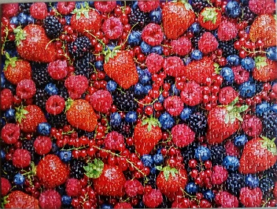 500 (Summer Fruits)1.jpg