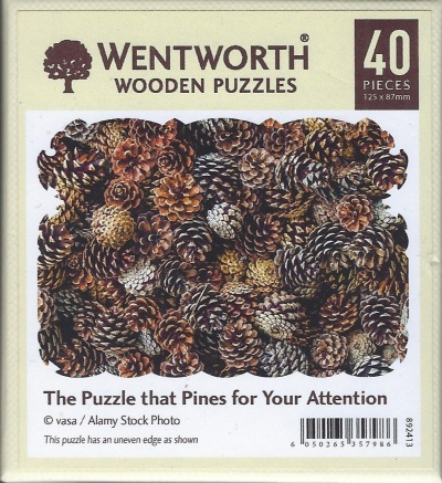 40 The Puzzle that Pines for Your Attention.jpg